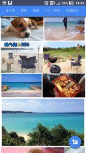 美ら海くんの写真を投稿